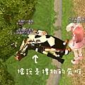 mabinogi_2009_06_14_053.jpg