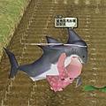mabinogi_2011_04_17_005.jpg