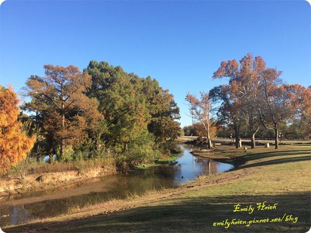 Fall view1.JPG