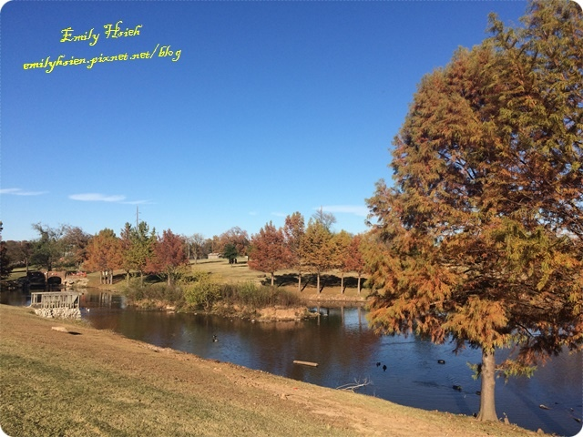 Fall view2.JPG