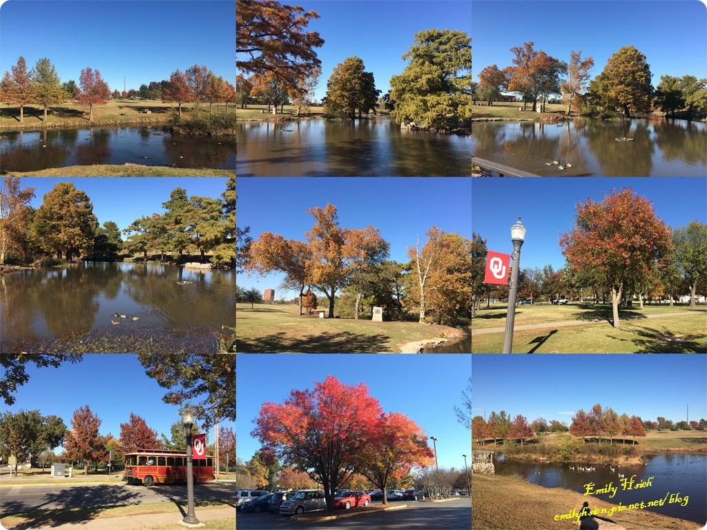 Fall view.jpg