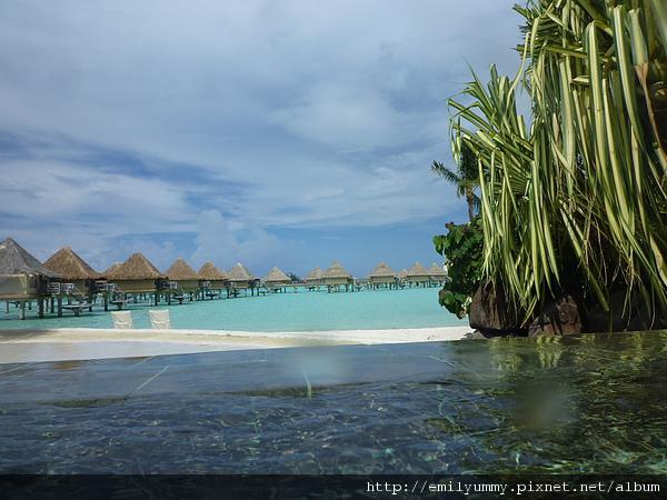 跟夏都很像泳池海景連成一色