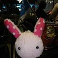 兔兔也來了喔!