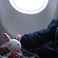 兔兔第一次坐飛機不知道會不會緊張耶!