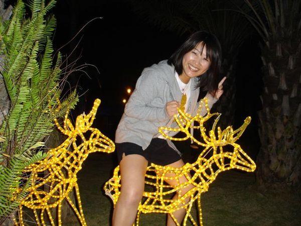 我也來騎縻鹿!