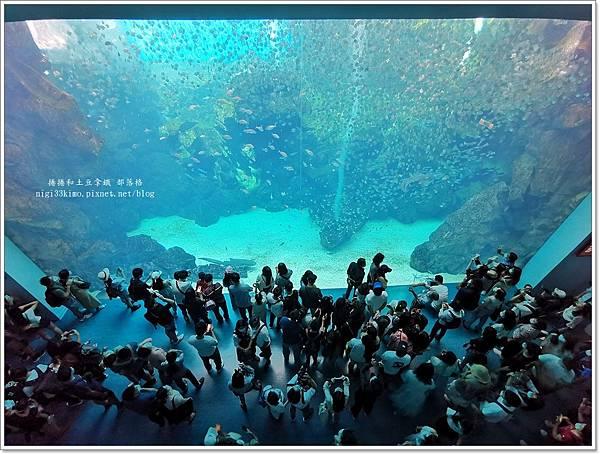 03.今年新開幕的 Xpark 有一個巨型水槽,高8公尺、寬12公尺。圖:痞客邦部落格「捲捲和土豆拿鐵」提供。.jpg