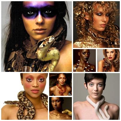 3.蛇蠍美人