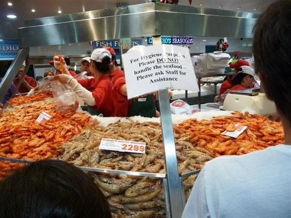 雪梨漁市場-3.JPG