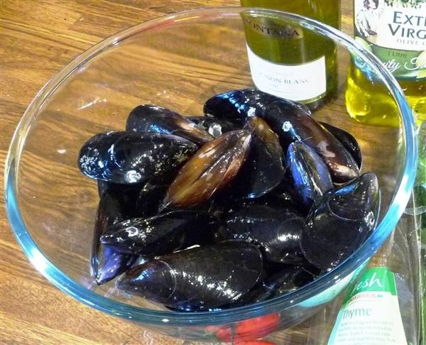 貽貝 mussels.JPG