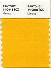 PANTONE 12-0848 Mimosa-colour of 2009.jpg