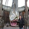 美國Day2下午(60)跟大白鯊合照
