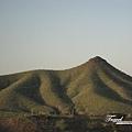 美國Day4上午(16)仙人掌山2~(忘了他的名字了).jpg