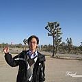 美國Day4上午(19)後面是仙人掌叢林.jpg