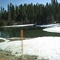 美國Day6(14)越接近國家公園~~就看到路旁越多的雪~~.jpg