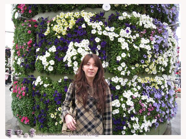 圓山公園區-造型花牆區