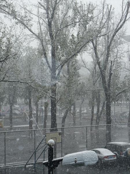 snow@BJ