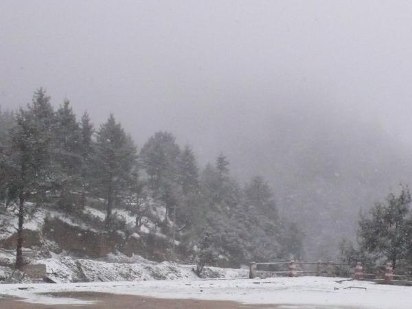 牦牛坪雪景