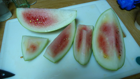 watermelon_early_cut.JPG