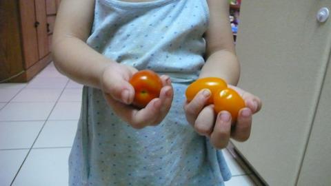 tomato_hand2.JPG