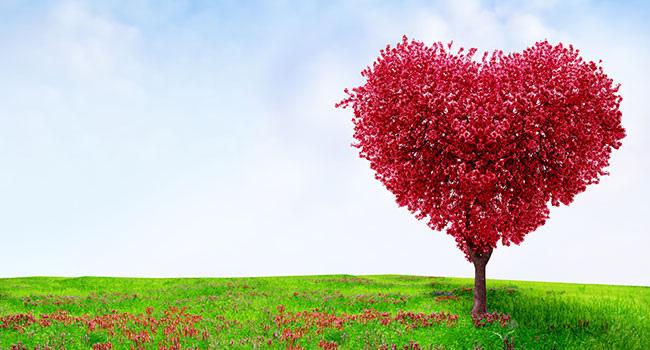 red-heart-tree.jpg