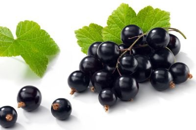 Black-Currant-flavor-1_s.jpg