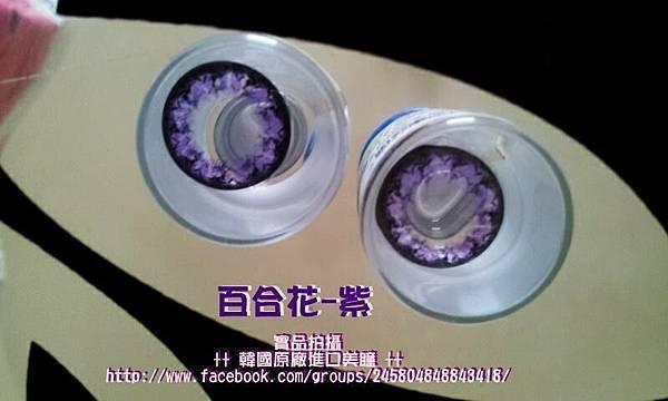 (實品拍攝)百合花-紫(隱形眼鏡)