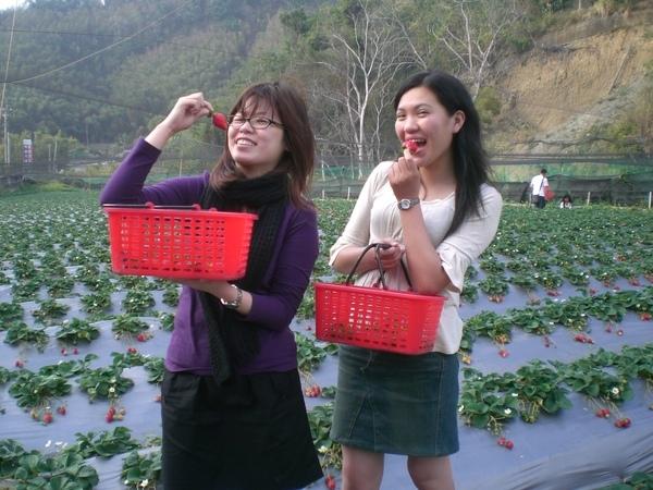 偷吃草莓^^