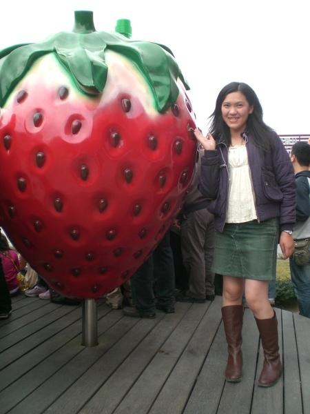 原來草莓也比我高