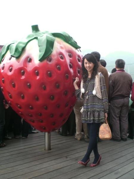 比小文高的草莓