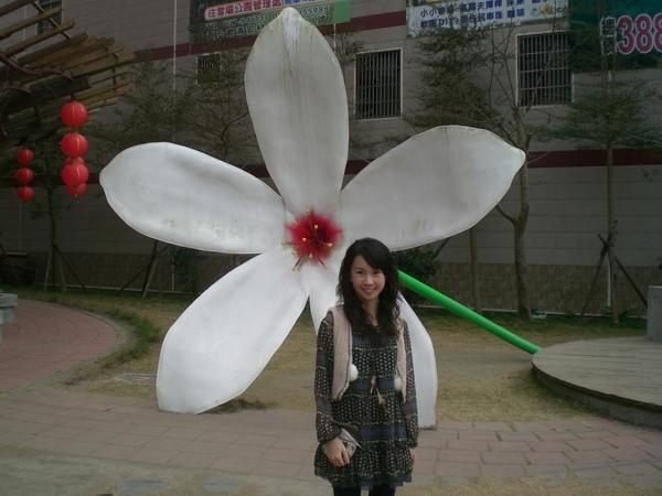油桐花和小文