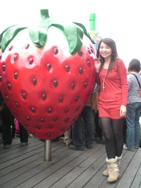 流星衣服和草莓真配