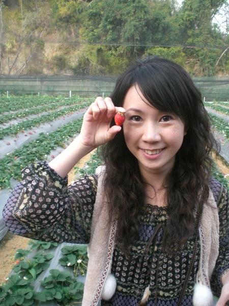 草莓+小文