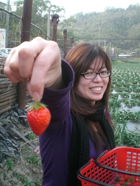 金姐漂亮的草莓