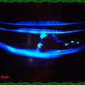 nEO_IMG_PC280659.jpg