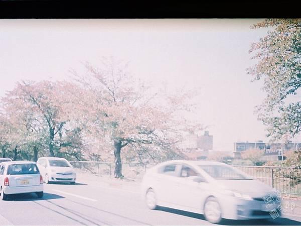 F1060018_副本_副本.jpg