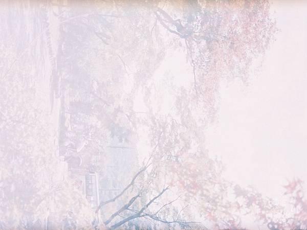 F1060004_副本.jpg