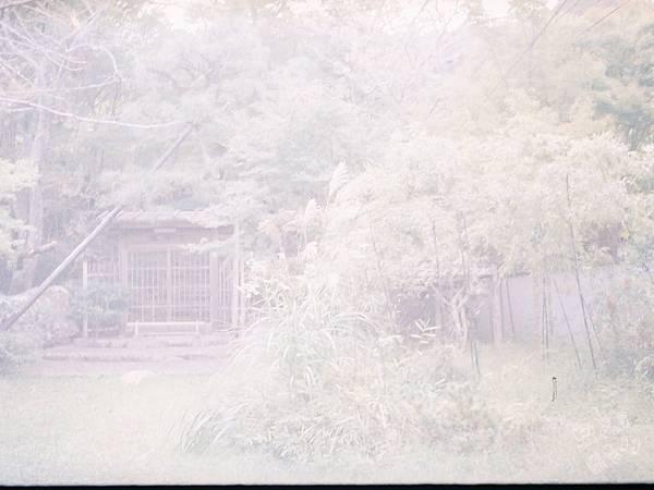 F1060010_副本.jpg