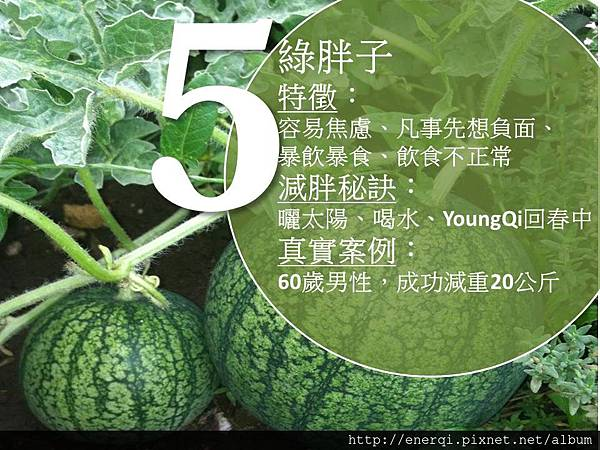 20160226綠胖子.jpg