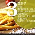 20160226黃胖子.jpg