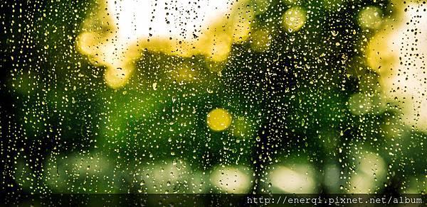rain-932275.jpg