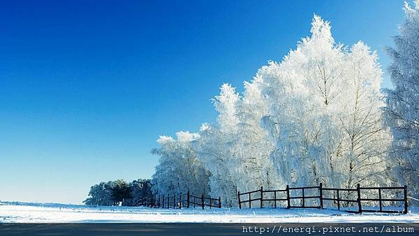 snow-landscape-background.jpg