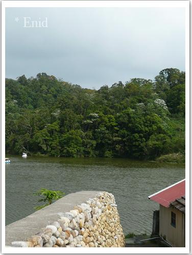 有一個踩天鵝船遊湖的地方