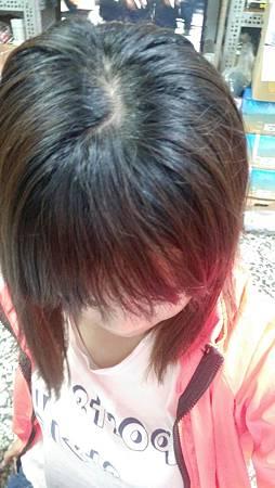 CONTIN康定-酵素植萃洗髮乳_1196.jpg