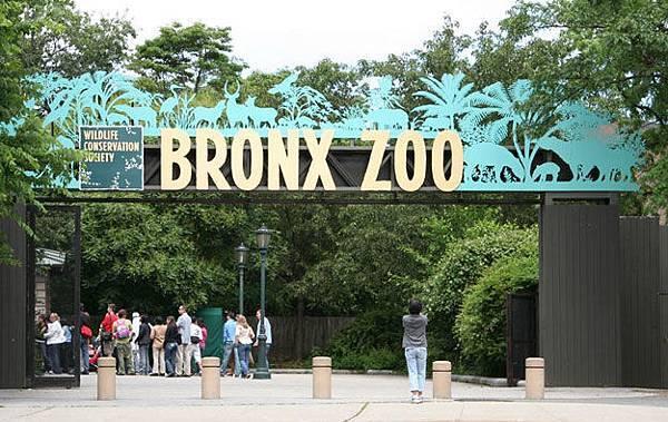 P.41-013 bronx-zoo-address