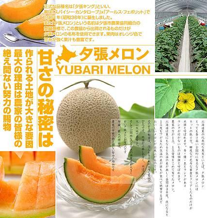 yubari-900-002.jpg