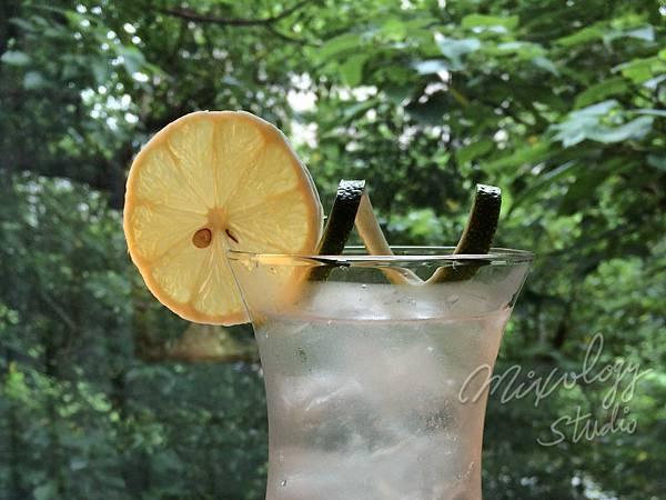 Garnish-005 檸檬片帶皮捲.jpg