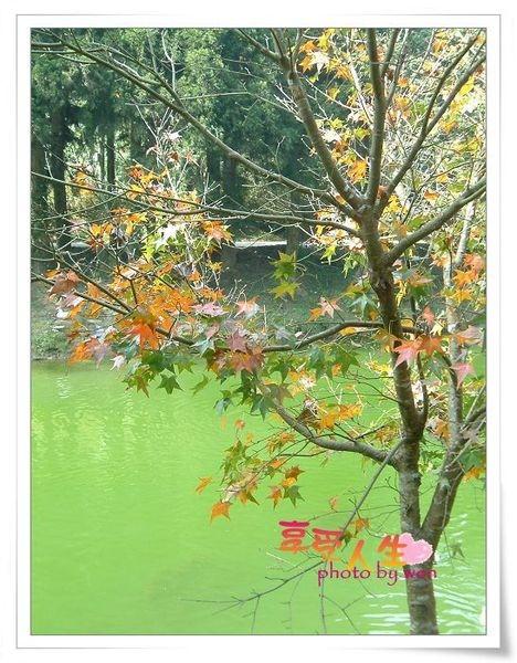 http://pics21.blog.yam.com/11/userfile/e/enjoylife22/album/1496b199116b89.jpg