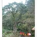 http://pics21.blog.yam.com/11/userfile/e/enjoylife22/album/1496b1c58da93e.jpg
