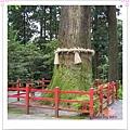 http://pics21.blog.yam.com/13/userfile/e/enjoylife22/album/148ce92927f9b5.jpg
