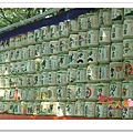 http://pics21.blog.yam.com/13/userfile/e/enjoylife22/album/148ce9a230ec8c.jpg